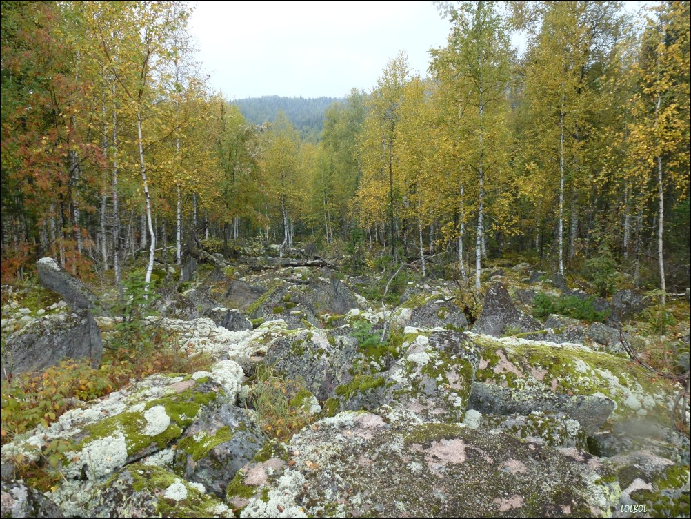 Trip-to-mountains-Siberia-04