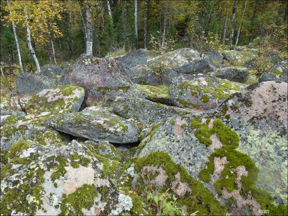 Trip-to-mountains-Siberia-05