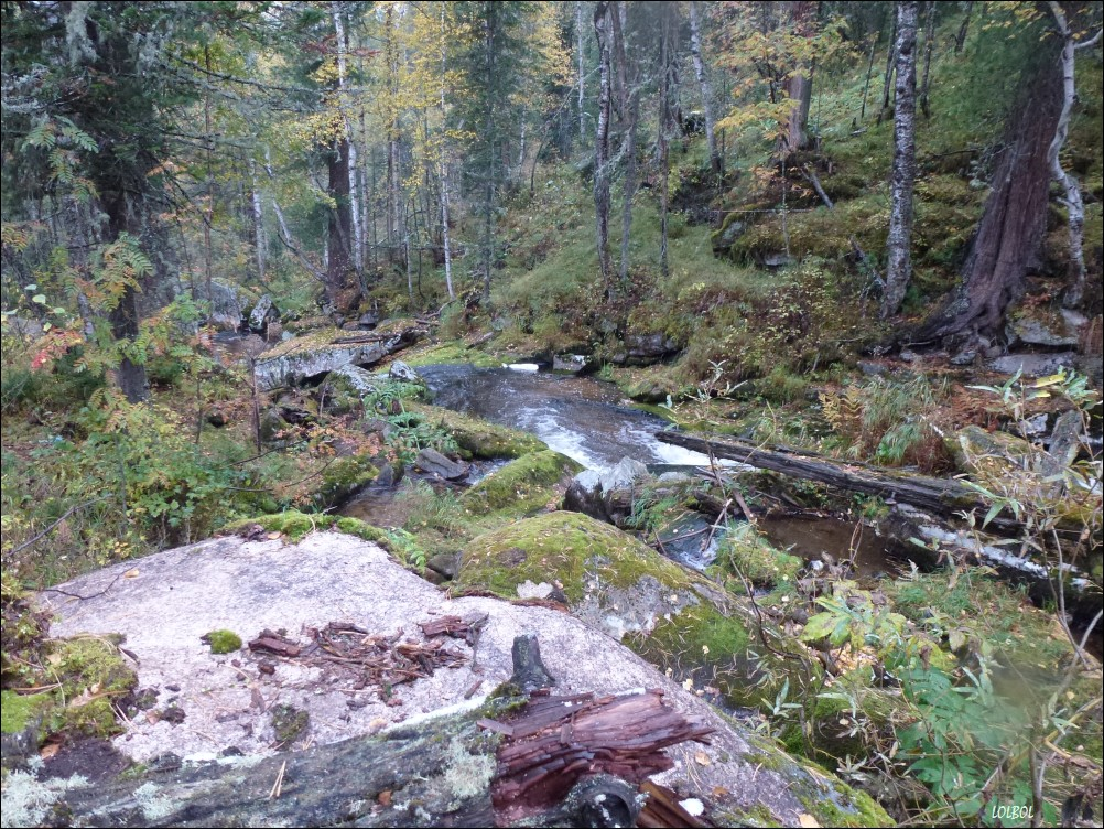 Trip-to-mountains-Siberia-16