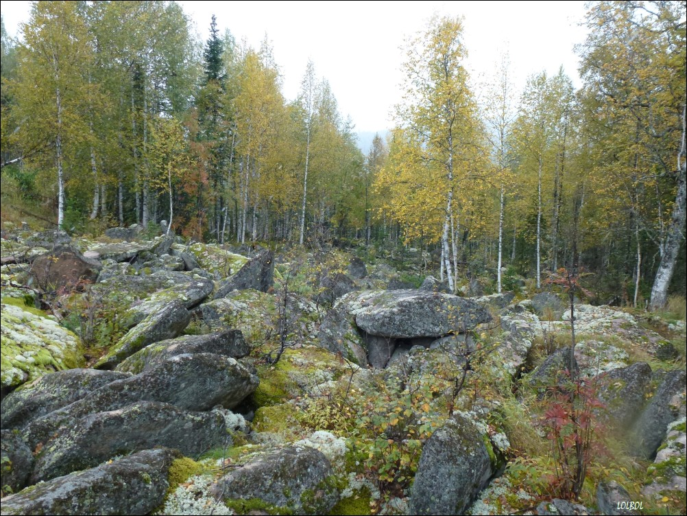 Trip-to-mountains-Siberia-23