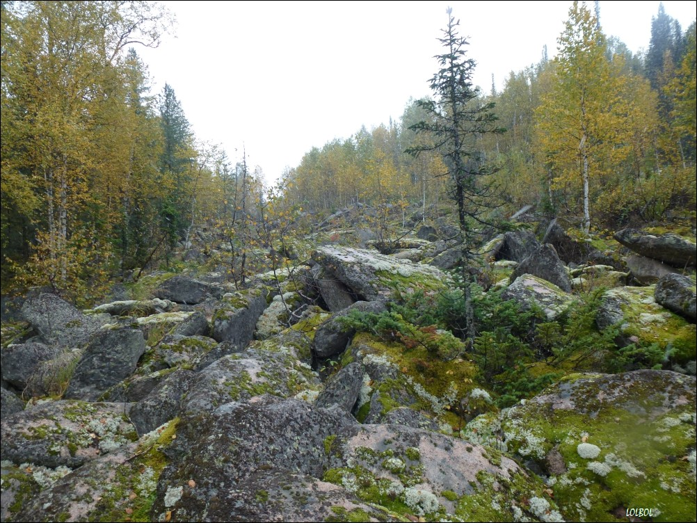 Trip-to-mountains-Siberia-25
