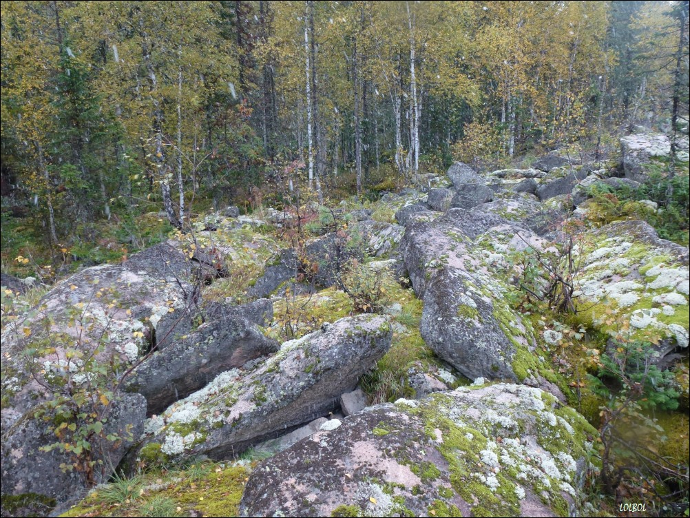Trip-to-mountains-Siberia-26