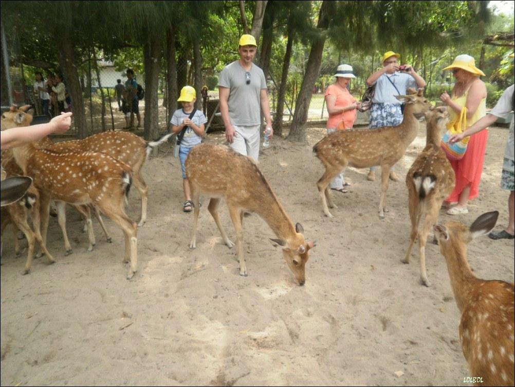 Visiting-Vientam-Nha-Trang-04