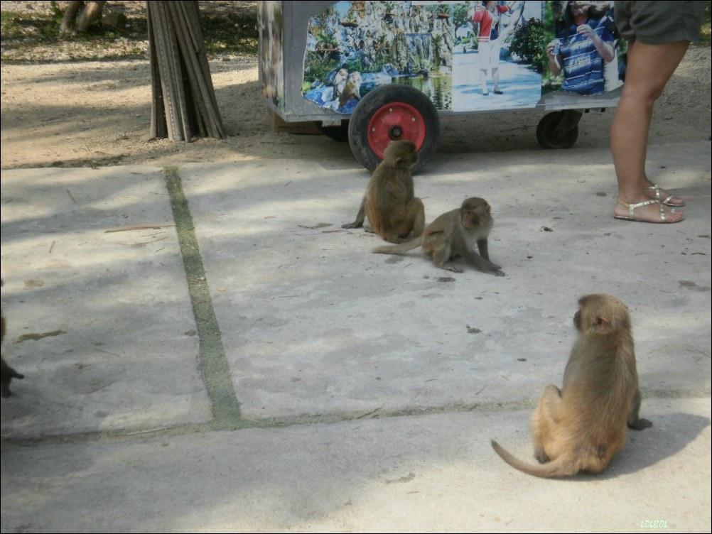 Visiting-Vientam-Nha-Trang-08