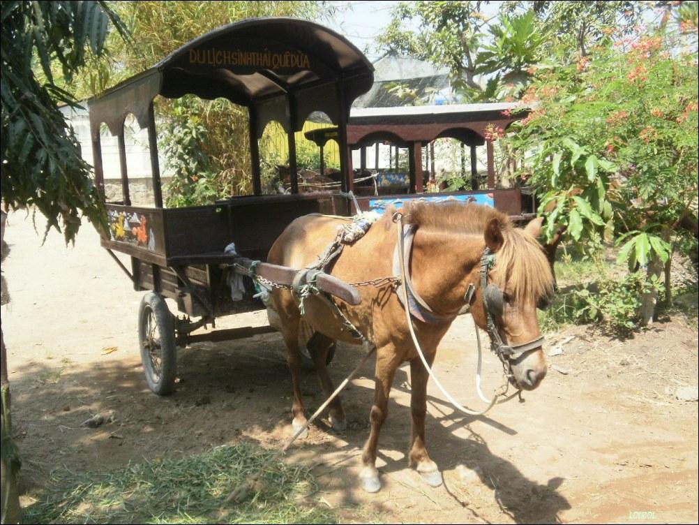 Visiting-Vientam-Nha-Trang-27