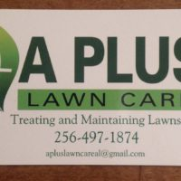 Professional Lawn Treatment, Turf Management (Athens Madison)