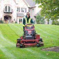AFFORDABLE LAWN SERVICES AT IT'S BEST (mid-Pinellas & Beaches)