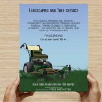 Landscaping and Tree service cheapest in town (All delaware)